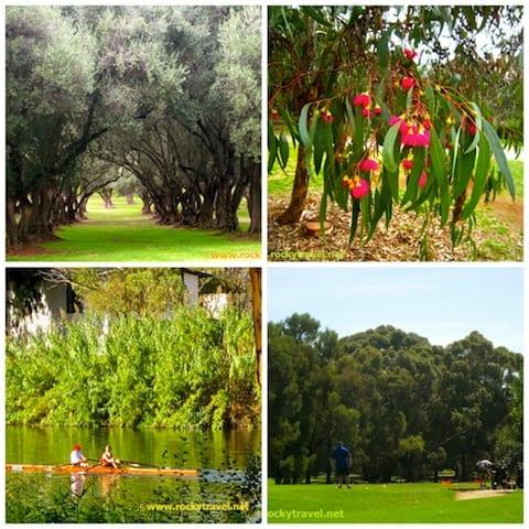 Adelaide Parksland