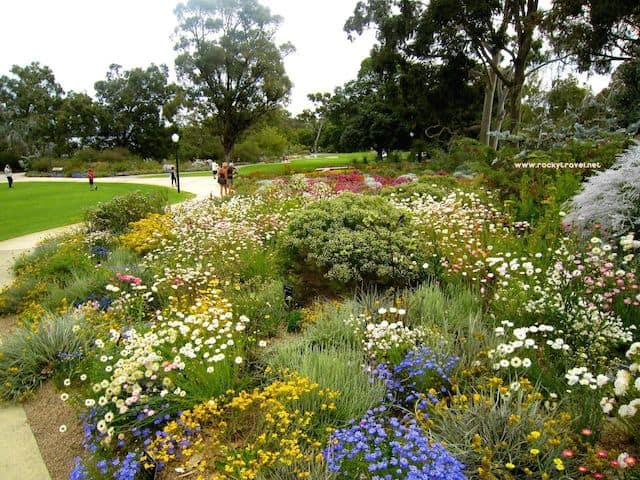 how to get to kings park perth