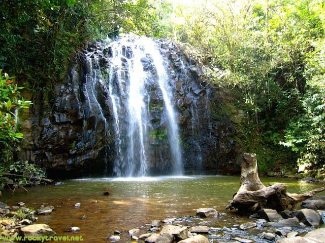 Discovering the atherton tablelands in north queensland for The atherton