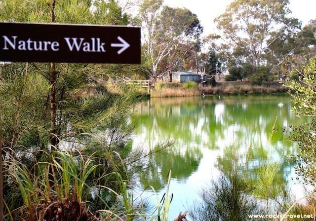 Nature Walk Maggie Beers Farm