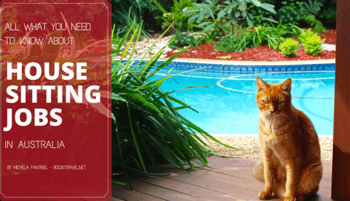 All what you need to know about House Sitting Jobs