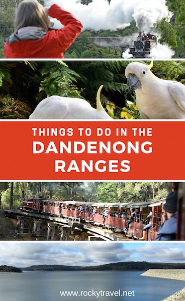 Top Things to do in the Dandenong Ranges Melbourne Australia