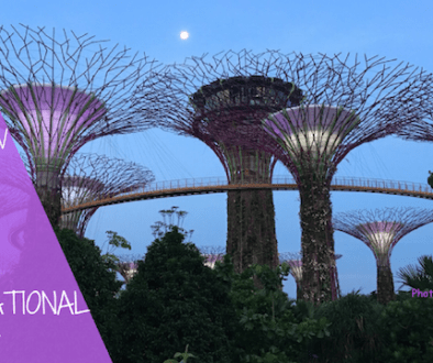 Things to know about International Travel