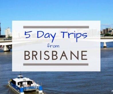 Best Day trips from brisbane