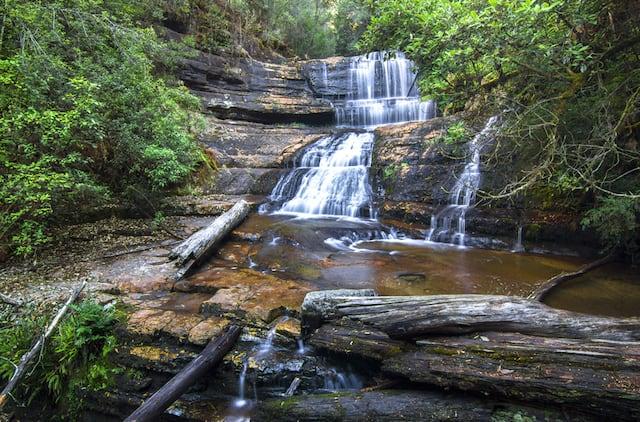 Lady Barron Falls Circuit Walk in Mount Field National Park Tasmania