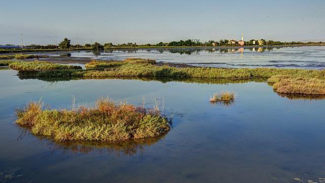 Lio Piccolo Island Venetian Lagoon