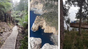 Stunning Landscape of the Tasmanian National Parks three capes