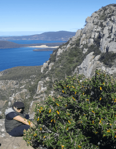 Beautiufl view of the coastal landscape at the three capes track