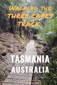 How to walk alone the three capes track tasmania